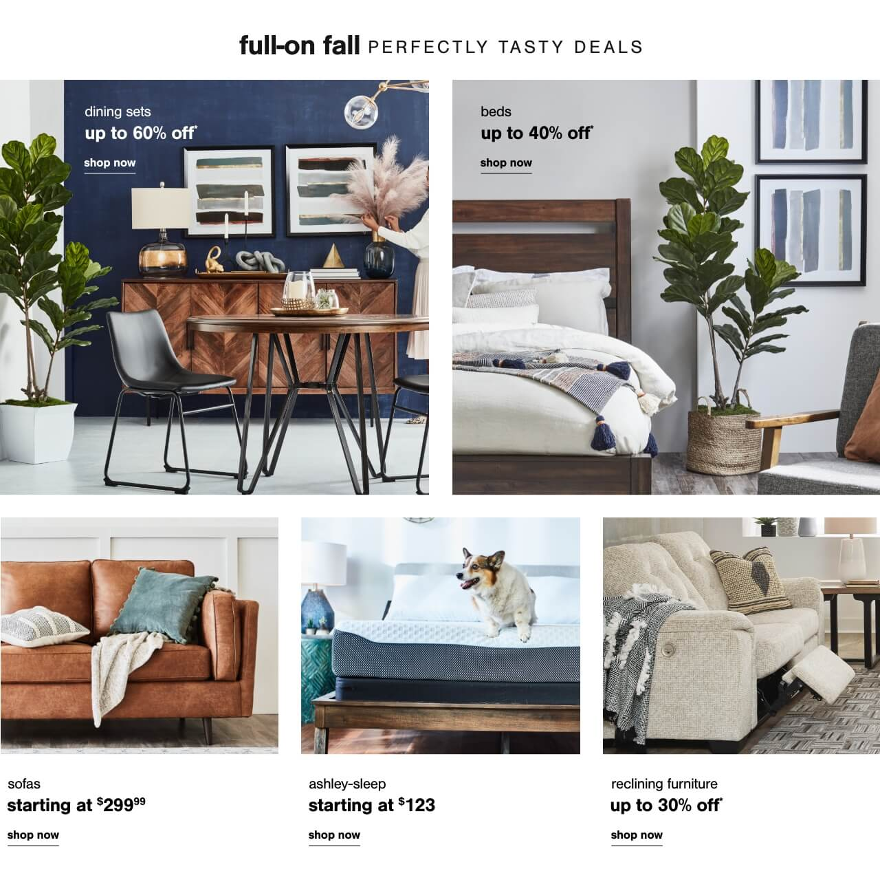 The Whole Package: Dining Sets Up to 60% Off         ,  Bed Savings that you could only Dream Of!- Shop Beds Up to 40% Off        , Sofas starting at $299.99  , Reclining Furniture Up To 35% Off, Reclining Furniture Up To 30% Off