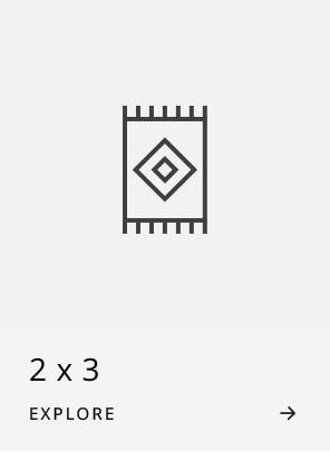 2x3 Rugs