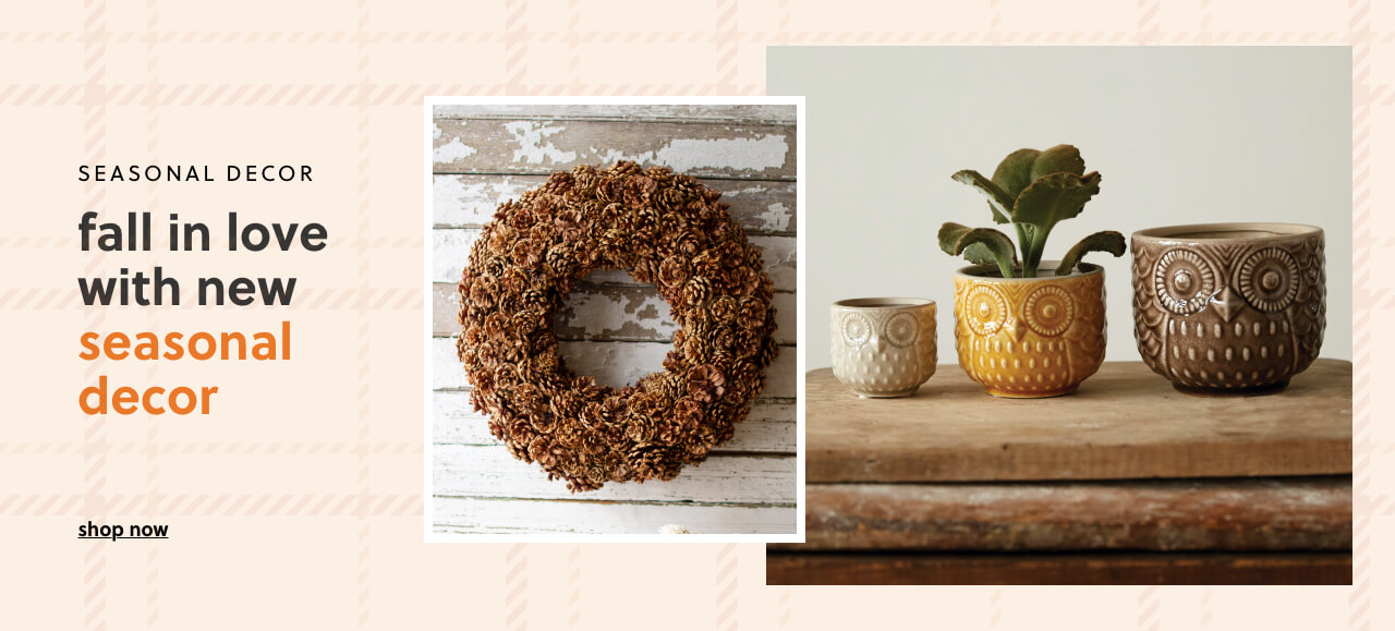 FALL in love with NEW Seasonal Decor!