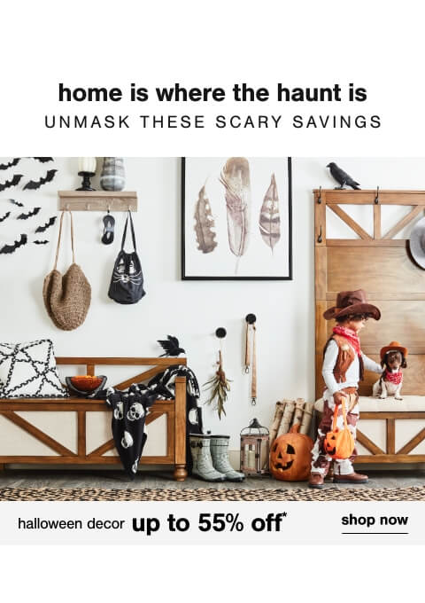 Halloween Decor up to 55% off + FS     ,Sofas up to 40% off,Get Cozy for Fall - Comforter Sets up to 60% off + Free Shipping