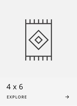 4x6 Rugs