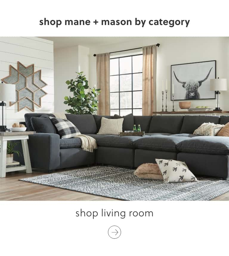 Mane and Mason Living Room