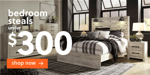 Bedroom Steals Under $300 + Free Delivery