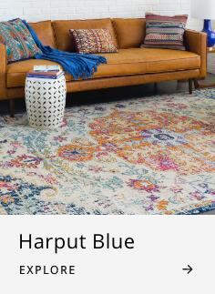 Home Accents Harput Blue Area Rug